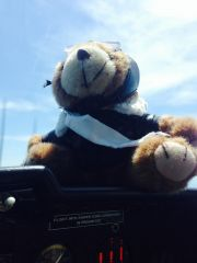 CoPilot Bear at FL16 - and no Oxygen!  Feelin' good.