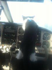 Simon is my Copilot