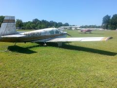 rotting mooney 016