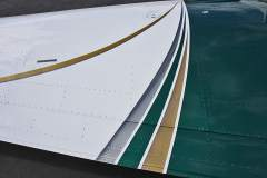 Wing stripes with air brushing on Gold and Silver stripes