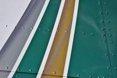 Wing airbrushing -Detail  Gold and Silver stripes