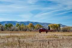 Landing in a field!